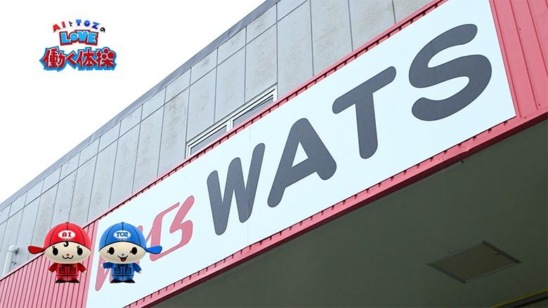 wats_icatch